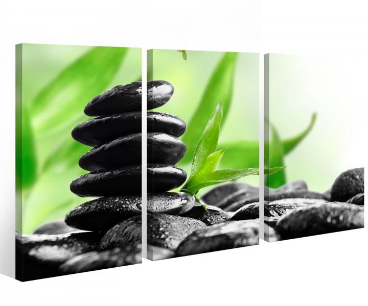 Leinwand 3 tlg pflanze steine wellness feng shui bilder gr n wandbild 9a571 holz fertig gerahmt - Amazon wandbilder ...